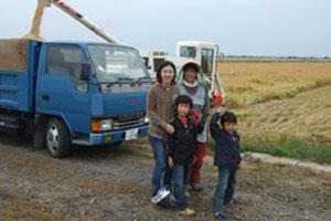 青大豆の収穫は一日が勝負です