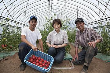 特選級トマトだけを育てジュースに! 破格の農園レポート
