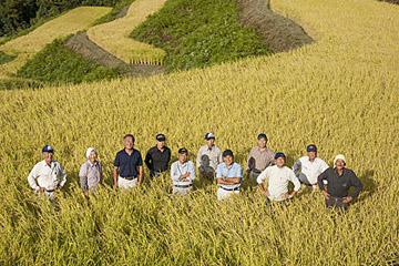 収穫まで2週間、米よ!もっと旨くなれ