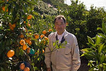 味わいいろいろ! 瀬戸内海の「完紅」柑橘 / 広島県尾道市・森野果樹園を訪ねる