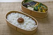 健菜米コシヒカリ