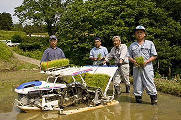 健菜米コシヒカリの栽培が始まりました