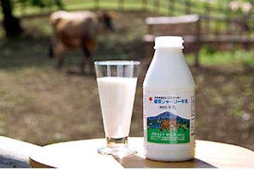 健菜ジャージー牛乳