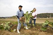 雪待ち吉川の畑しごと  永田農法で育てる菜花と芋