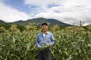 甘さ日本一、地産地消の嶽きみは 岩木山麓の高原育ち