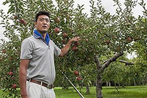 りんご王国の中心で高みを目指す