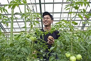 北海道随一 絶品トマトの産地を訪ねて