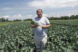 夏本番!北の大地から 新鮮野菜がやってくる