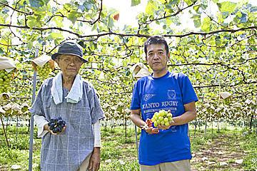 ブドウ栽培は楽しい