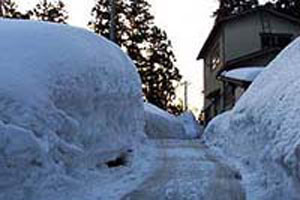 豪雪に春の到来をじゃまされています