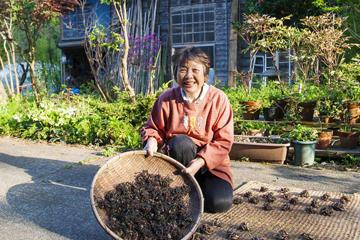 干し野菜で真似る農家の庭先 太陽の力を借りて手間仕事