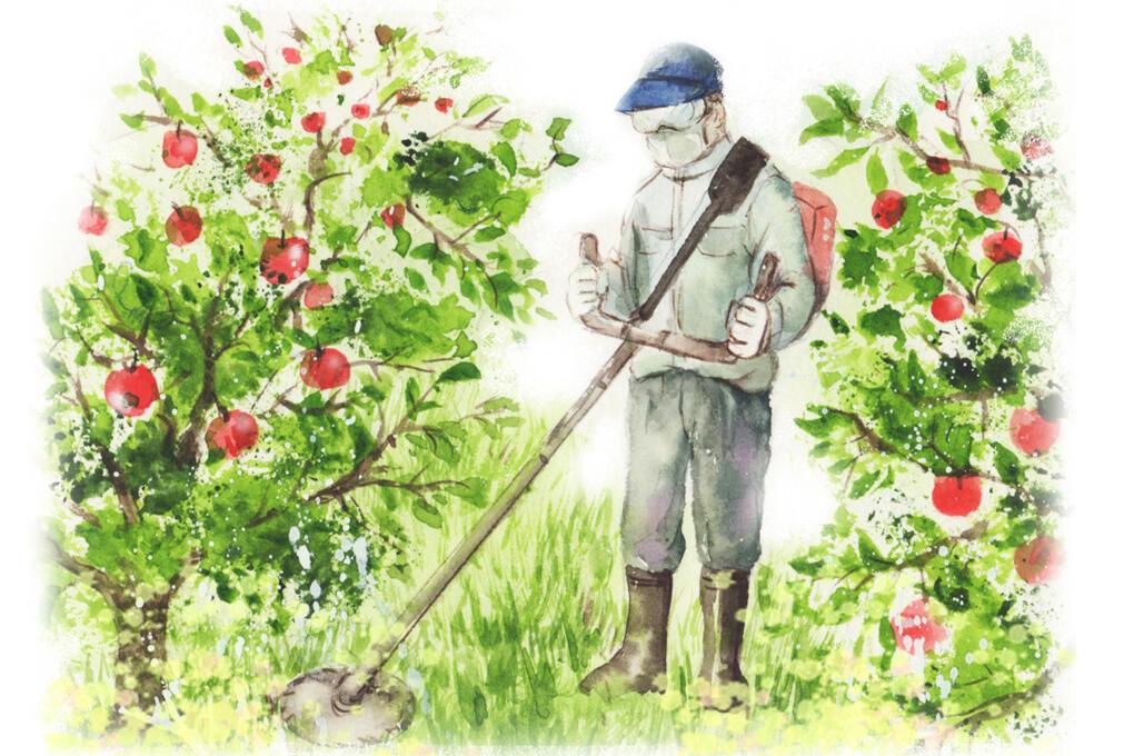環境にやさしい農業
