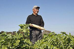 潮風が吹く農園で育てる、「くすり」になる野菜