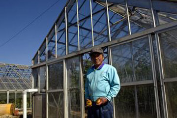 はじまりのトマト・ これからのトマト / 愛知県田原市・小久保農園を訪ねる