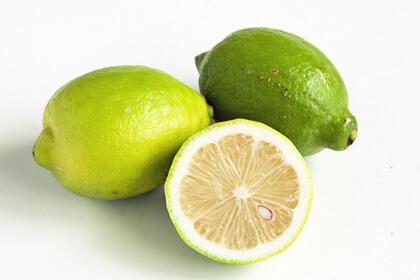 《10月》グリーンレモン